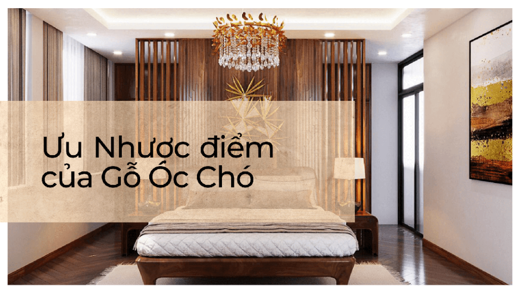uu-nhuoc-diem-cua-go-oc-cho