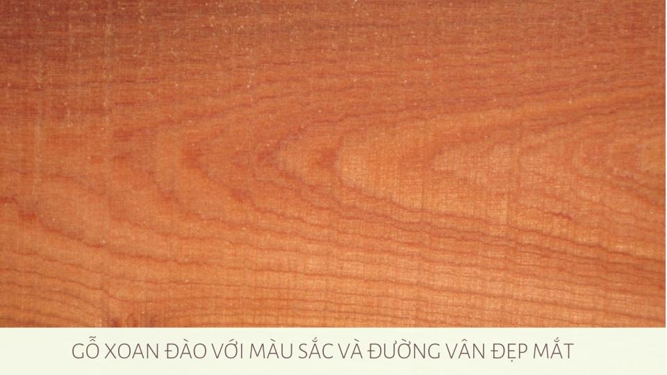 cac-loai-go-thuong-dung-cho-do-noi-that (2)